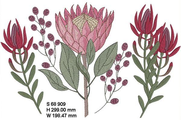 Fynbos Flowers-4