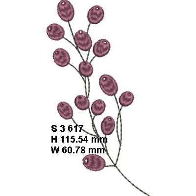 Fynbos Flowers-5