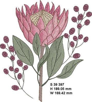Fynbos Flowers-8