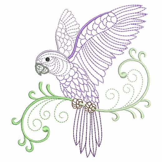 Vintage Parrots 2