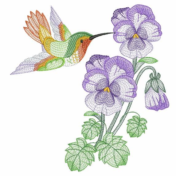 Elegant Hummingbirds 4-3