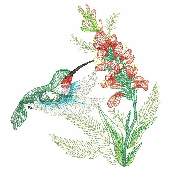 Elegant Hummingbirds 4-6
