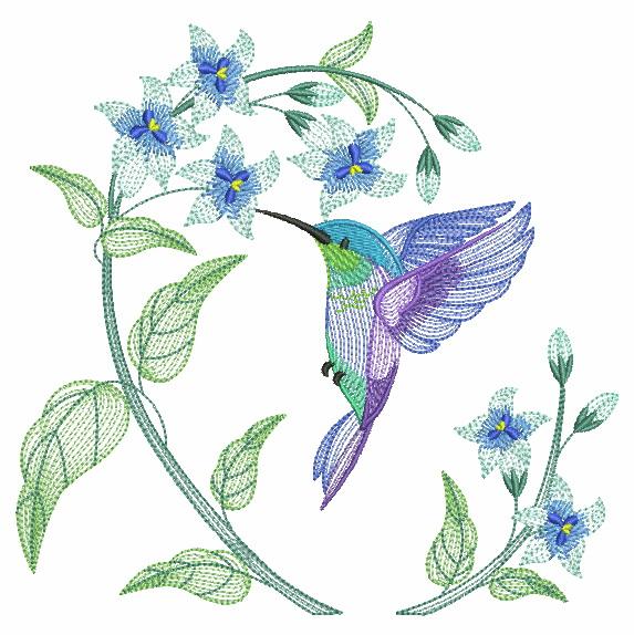 Elegant Hummingbirds 4-10