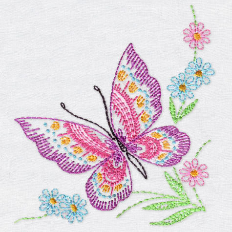 Colorful And Graceful Butterflies
