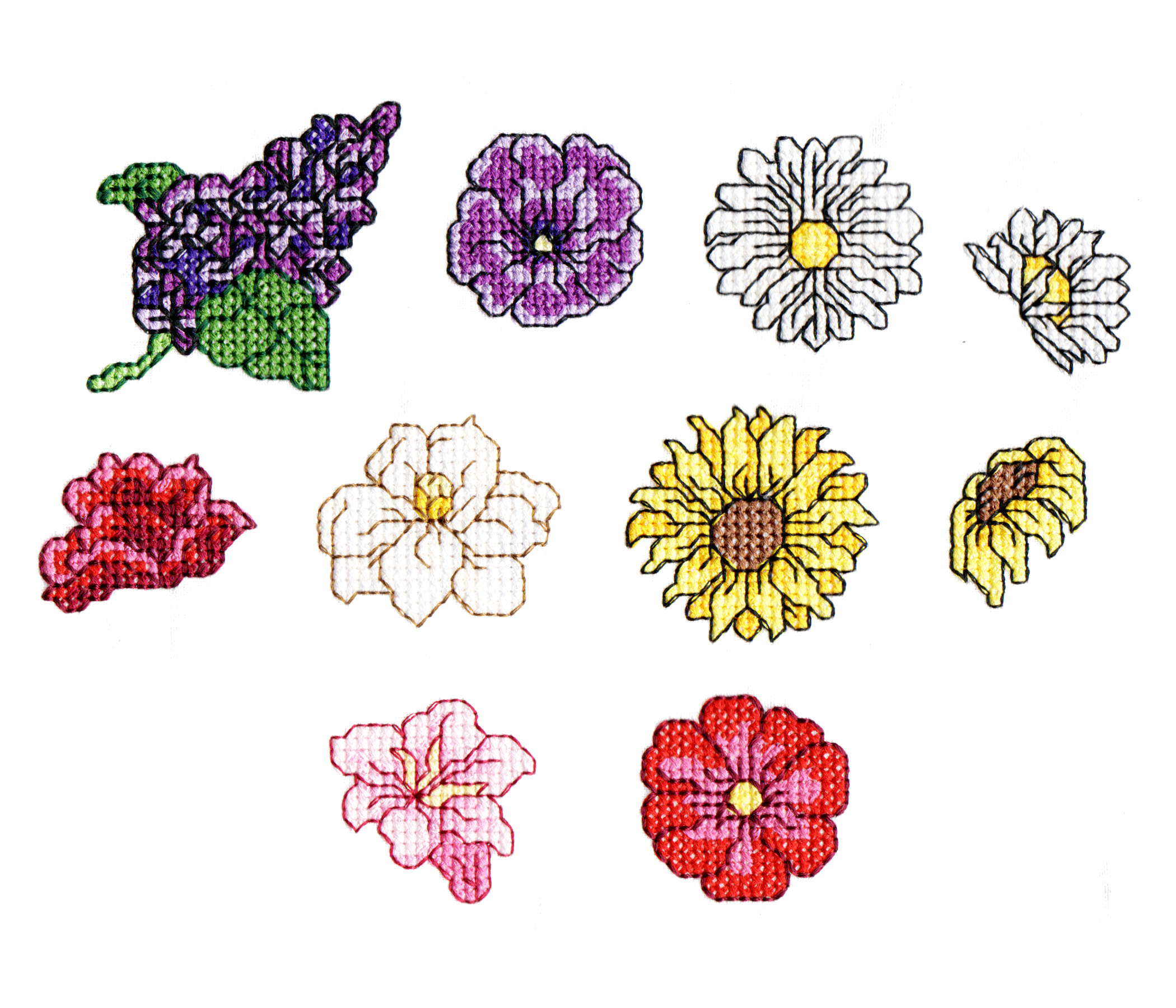 Floral Borders-11