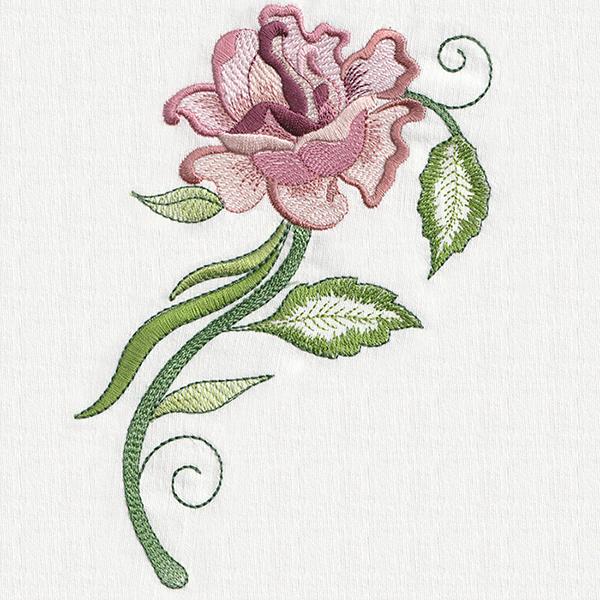 SYMPHONY OF ROSES COMBO SET-4