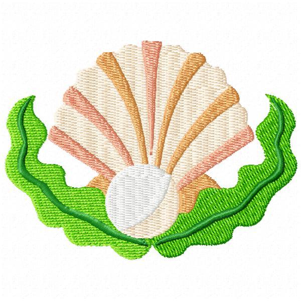 Seaweed and Shells-3