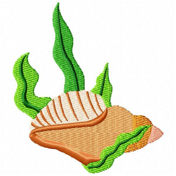 Seaweed and Shells-5