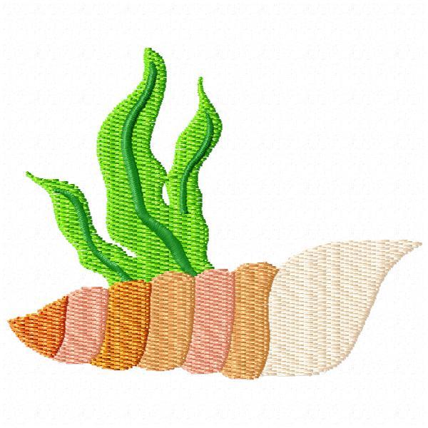 Seaweed and Shells-6