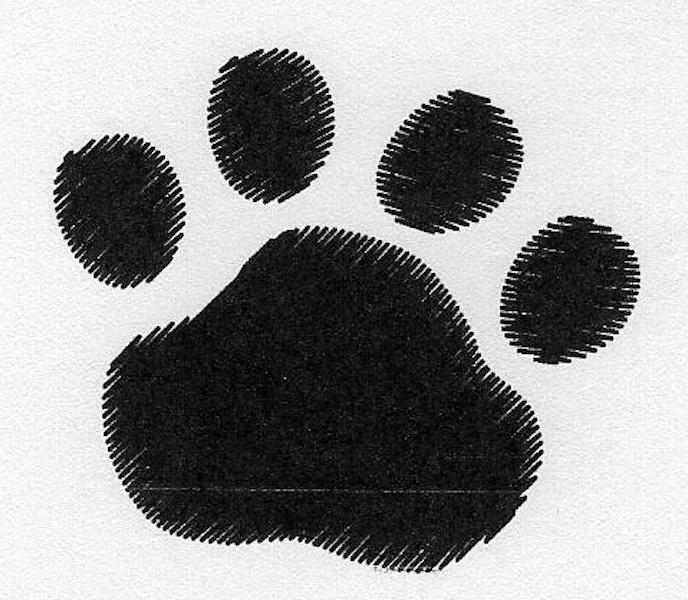 Cat Paw Trio YZ Blank-6