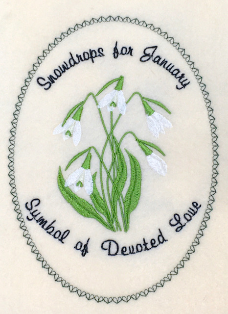 Flower  of the Month:  January