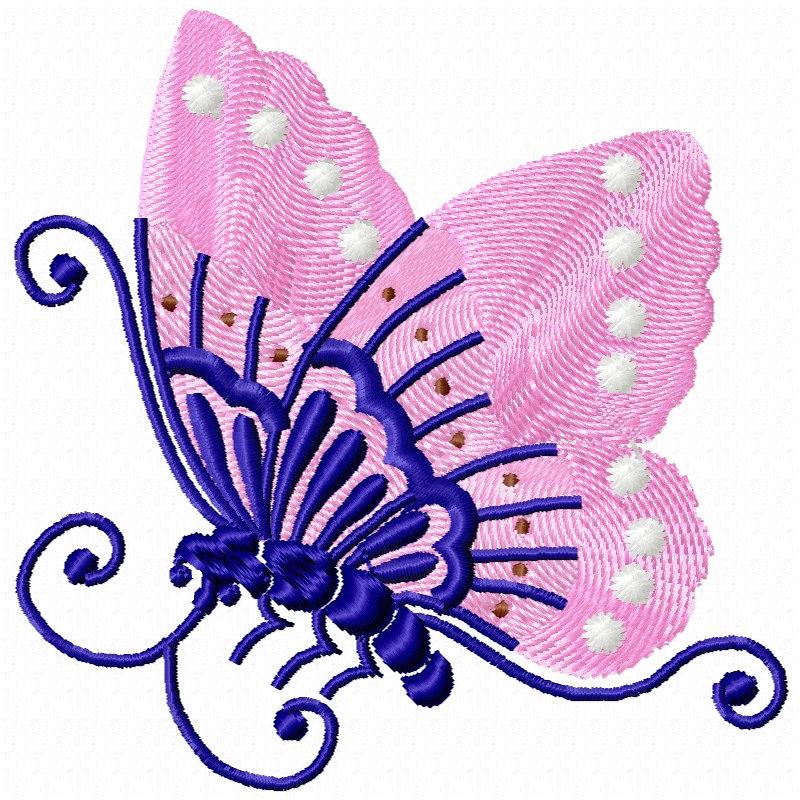 Chinese Butterflies-5