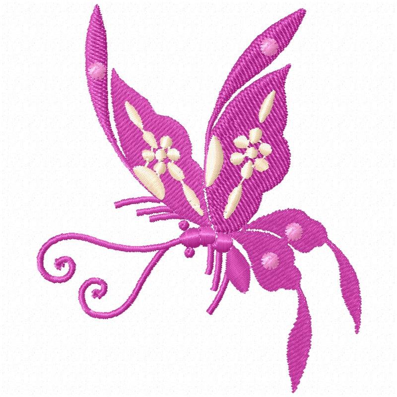 Chinese Butterflies-6