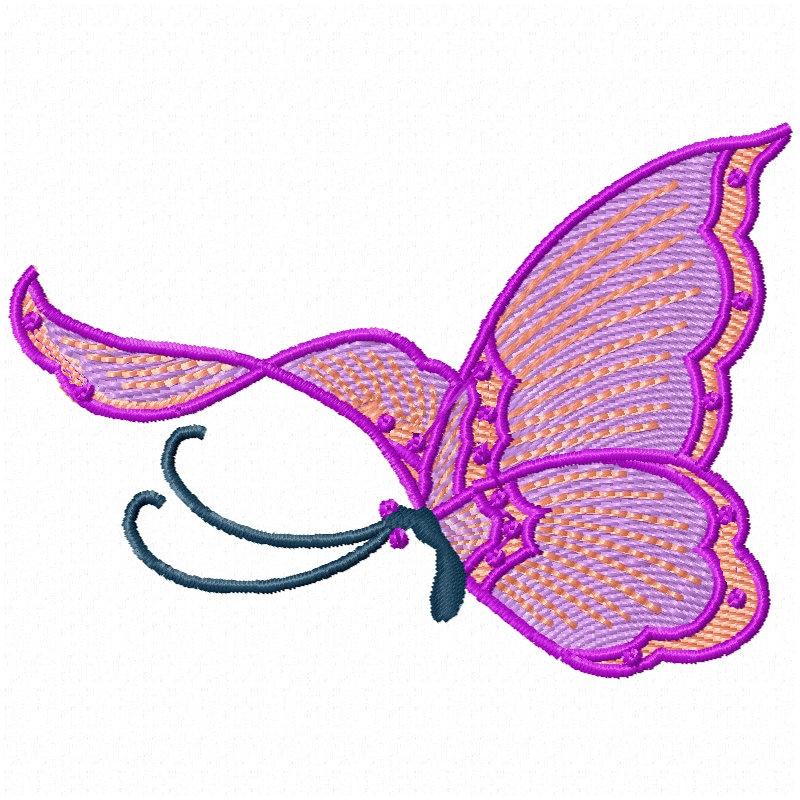 Chinese Butterflies-7