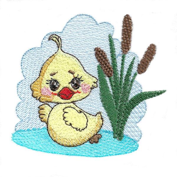Summer Ducks-9