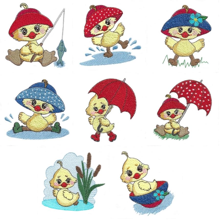 Summer Ducks