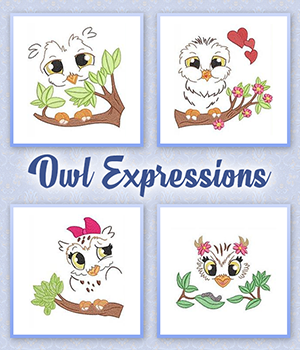 Owl Expressions