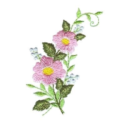 Pink Blooms -5