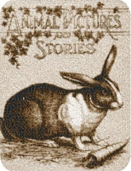 Animal Pictures and Stories