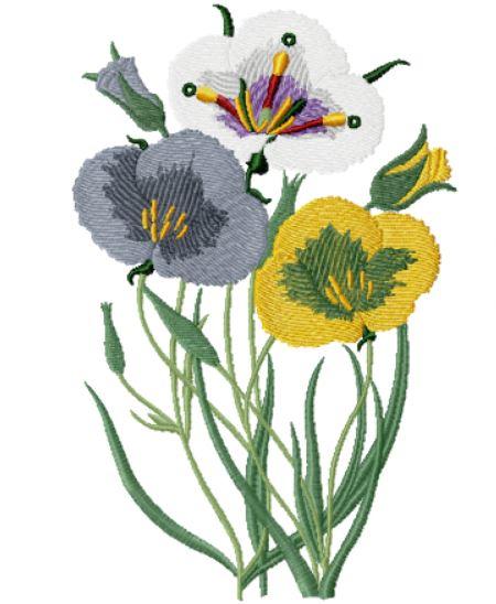 Floral 3617