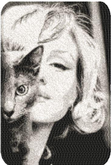 Marilyns Cat