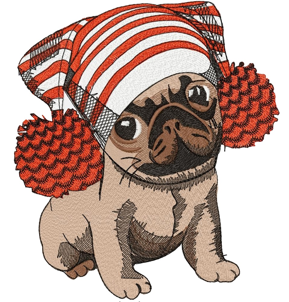 Pug in a hat-4
