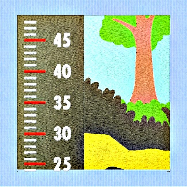 GROWTH CHART-8