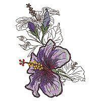Hibiscus Collage Combinations