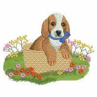 Spring Puppy