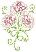 Colourwork Carnations