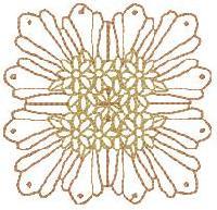 Semi Lace Variety