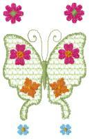Butterfly Florals