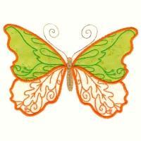 Bodacious Butterflies