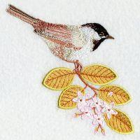 Massachusetts Bird And Flower