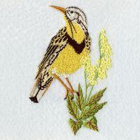 Nebraska Bird And Flower