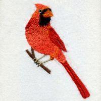 Ohio Bird And Flower