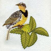 Oregon Bird And Flower