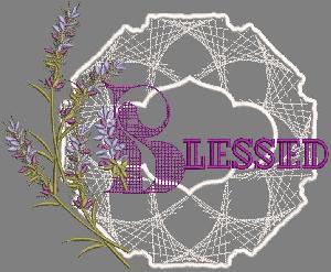 Dass001090-40 Sngles Lace