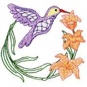 Elegant Hummingbirds