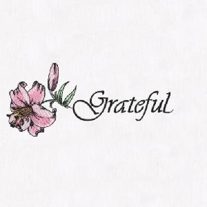 02 Lily-Grateful