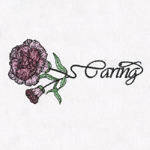 05 Carnation-Caring