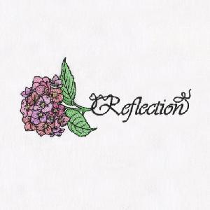07 Hydrangea-Reflection