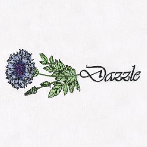 10 Cornflower-Dazzle