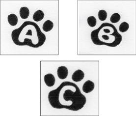 Cat Paw Trio ABC-3