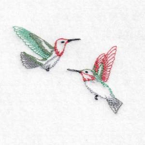 Tiny Hummingbirds