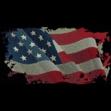 American Inspirations
