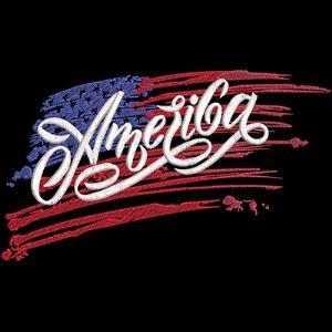 America The Beautiful -4