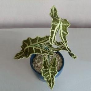 PAMS 3D HOUSE PLANTS
