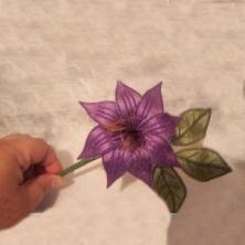 PAMS FLOWERS 2