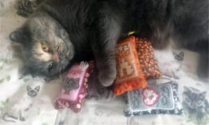 ITH Cat Nip Sachets